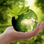 Come comprare i cibi che fanno bene alla salute ed al pianeta